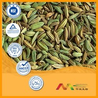 NSF-GMP Supplier provide health products Dill Extract powder