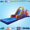 big capacity bouncy castle water slide/cheap inflatable bouncer and slide