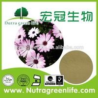 Herb Medicine 100% Natural echinacea purpurea extract in bulk