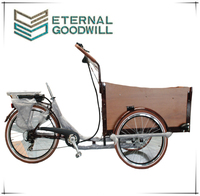 Electric cargo bike tricycle for passenger UB 9032E