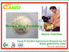 /product-gs/high-quality-organic-brown-rice-protein-powder-brown-rice-protein-powder-for-sports-nutrition-60196076671.html