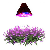 2015 New products CE Rohs E27 multi chips led grow light full spectrum
