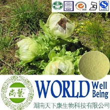 Hot sale Snow lotus extract/saussurea involucrata/Total Flavonoids/Smooth muscle plant extract