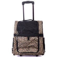 Large and luxurious pet carrier with wheel,pet carrier on wheels