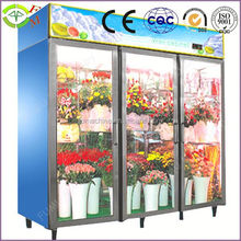 High efficiency Superior quality Flowers Cooler Showcase
