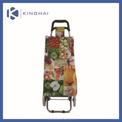 shopping cart trolley/foldable shopping trolley bag/folding shopping cart