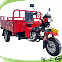 Heavy duty gasoline powered motor scooter tricycle