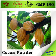BNP cocoa powder manufacturers