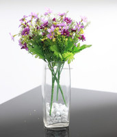 Transparent rectangular glass bottle for liquid and vase