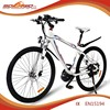 200-250 watt the best electric bike F/R Disc-brake economic bicycle prices