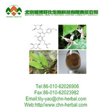 health Product Epimedium extract/ icariin extract powder
