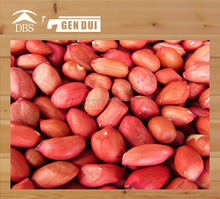 Peanut peanut in bold- type peanut in bold- type