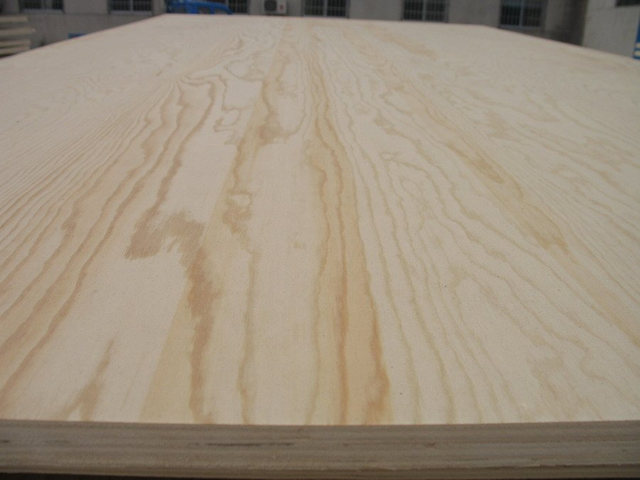 Bintango pine okoume birch bleached poplar face commercial for Furniture grade plywood