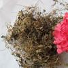 Ji xue cao Top Grade Natural Herb Centella asiatica herb Medicine Herbs
