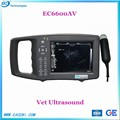 Veterinary ultrasound for ECI8000AV