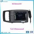 Veterinary ultrasound for ECI8000AV
