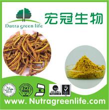 Natural Plant Phellodendron bark ratio extract 10:1 20:1