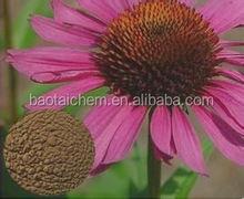 Echinacea purpurea extract china herbal extract