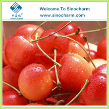 Hot-sale Sweet IQF Frozen Cherry