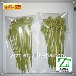 Manufacture full size vegetable color fruit picks made in China