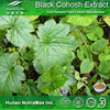 Top Quality Factory Black Cohosh Powder Extract Triterpene Glycosides 2.5% 5%