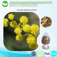 GMP high quality 100% Natural acacia rigidula extract Alkaloid 5% 10:1 20:1