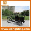 new stylish design electric bike cargo tricycle china scooter
