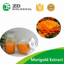 Water Soluble Herb Extract Marigold Extract, Lutein Powder