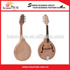 /product-gs/high-quality-electric-mandolin-1900678062.html