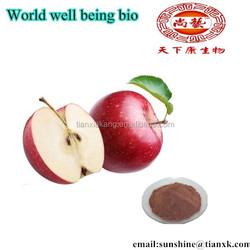 china apple seed extract /apple pectin supplier