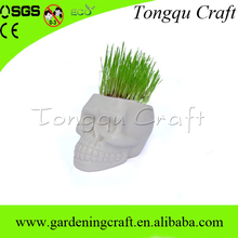 Yiwu tongqu novos produtos crânio forma de grama cabeça da boneca de natal de plantas de cerâmica
