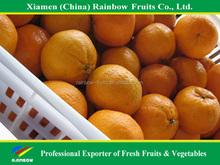 translate indonesia mandarin
