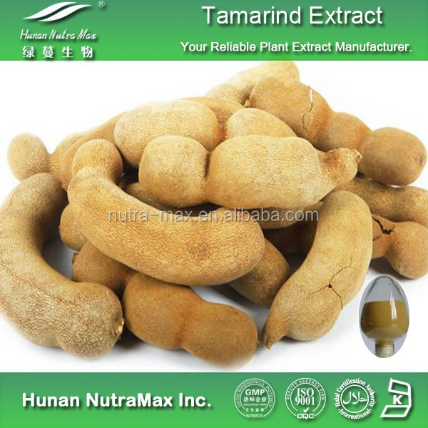 Tamarindus Indica Extract Pure Tamarindus Indica Extract