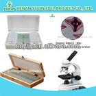 crianças lâminas preparadas para microscópio