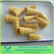 Canned Bamboo Shoots in Brine