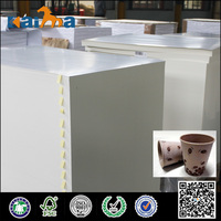 Double Tree Manufacture Duplex Board/Triplex Board/Cardboard Paper