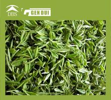 All grades Chinese organic green tea