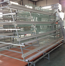 layer poultry farm design/caged chicken farming/project on poultry farming