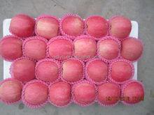 fresh 88-100 organic red fuji apple for sale