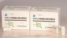 Group ACYW135 Meningococcal Polysaccharide Vaccine for Human Use
