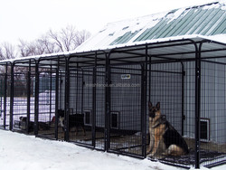 large iron wire mesh fence dog kennel