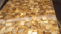 Petrified wood white ebony wood for table top