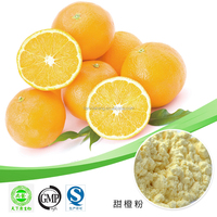 100% Natural Fruit Powder Orange Fruit Powder/Orange Drink Powder/Tang Orange Juice Powder
