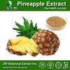 Food Grade 100% Natural Pineapple Extract Powder