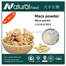 Acting as customer s requirement maca powder extract 4:1