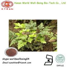 Scutellaria Baicalensis Root Extract Baicalin /Baical Skullcap Root Extract /RADIX SCUTELLARIAE Extract Baicalein