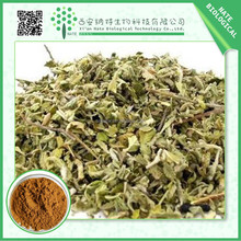 wholesale top quality natural damiana leaf extract 50:1