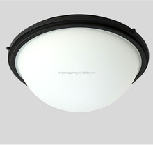 Hot New Design Opal Glass Classic Ceiling Lamp for USA Canada