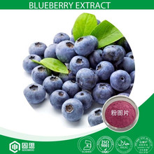 UV Blueberry Extract with 25% Anthocyanidins