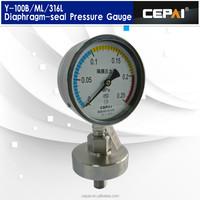 DN100mm Diaphragm seal type pressure gauge